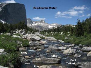 how to read trout stream