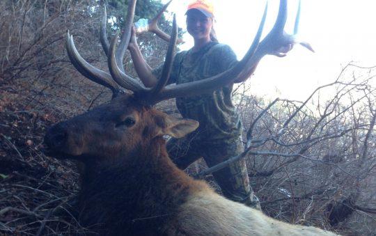 The Wacem Bull, McKenna Davis