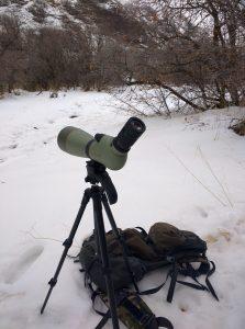 kowa tsn-883 spotting scope review