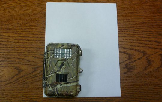 Bushnell Trophy Cam Trail Cam Review
