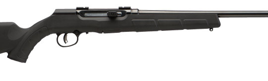 Savage A17 Rimfire Rifle review, 17 HMR Review